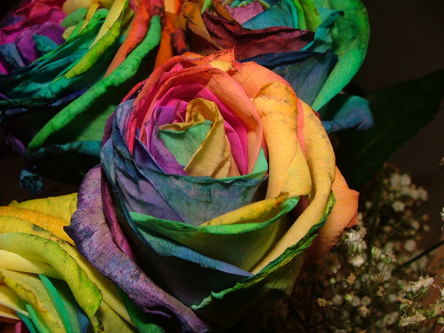 Psychedelic Roses by DancesSoSexy on DeviantArt  -  CC BY-NC-ND 3.0
